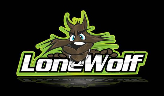 Lone Wolf and fearing for WSBK - Bikesport News