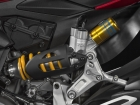 40-20 1299 panigale s