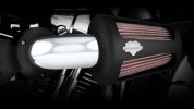 This would look good on your H-D, why not try it out